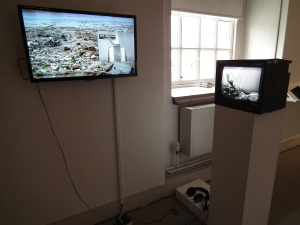 Claudia Firth: installation of: Data Stream: the Animal in the Machine, the Beast in the Market,2014, video 3mins and  Back and Fill, 2014, video 9mins