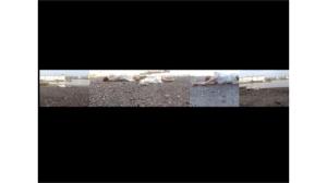Rachel Gomme: Flotsam (Tideshift), 5 screen video, 30mins